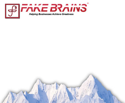 AccountScout Newspaper Software - Fake Brains